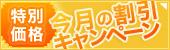 BBI日本語教師ネットワークの今月のキャンペーン